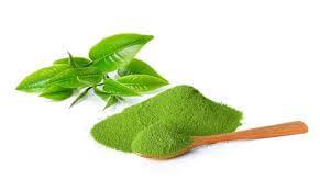 5 loại mặt nạ tuyệt vời dành cho da dầu từ trà xanh 1