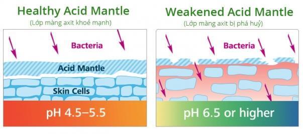 Chăm Sóc Màng Acid Mantle Là Cách Bảo Vệ Sức Khỏe Làn Da 1